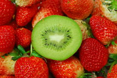 Frutta e fragola di Kiwi Fotografia Stock