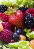 Frutta e lattuga Fotografie Stock