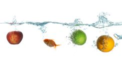 Frutta e pesci Fotografia Stock Libera da Diritti