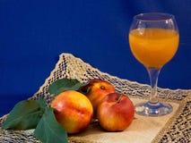 Frutta e succo Immagini Stock
