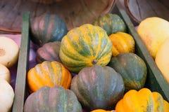 Frutta e verdura del mercato degli agricoltori di Tampa Bay Fotografia Stock Libera da Diritti