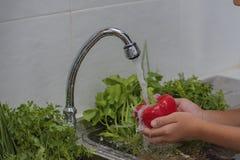 Frutta e verdure del lavaggio Immagine Stock
