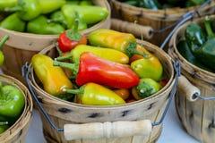 Frutta e verdure del mercato degli agricoltori Fotografie Stock Libere da Diritti