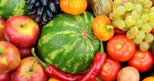 Frutta e verdure della raccolta Fotografia Stock Libera da Diritti