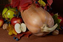 Frutta e verdure di autunno Immagini Stock Libere da Diritti