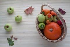 Frutta e verdure di autunno Fotografia Stock