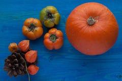 Frutta e verdure di autunno Fotografia Stock Libera da Diritti