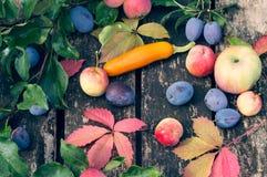 Frutta e verdure di autunno su una vecchia superficie di legno immagine stock libera da diritti