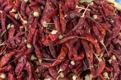 Frutta e verdure fresche Peperoni di peperoncini rossi rossi Fotografia Stock Libera da Diritti