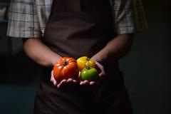 Frutta e verdure organiche Mani degli agricoltori con le carote appena raccolte Immagine Stock Libera da Diritti