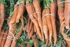 Frutta e verdure organiche nel mercato degli agricoltori: Wilson Park, T Fotografia Stock