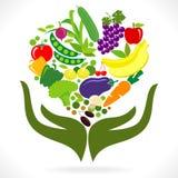 Frutta e verdure: Salute in vostre mani Immagine Stock Libera da Diritti
