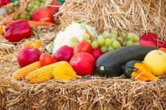 Frutta e verdure su paglia, agricoltura su estate o autunno Immagine Stock