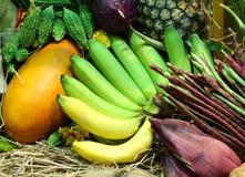 Frutta e verdure tropicali Immagini Stock Libere da Diritti