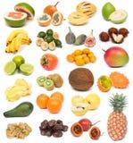 Frutta esotica Immagine Stock Libera da Diritti