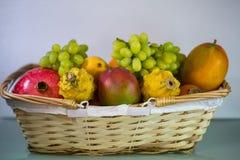 Frutta esotica, cachi, mango, pitahaja, melograno su un fondo bianco - Fotografie Stock
