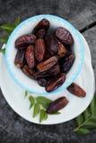 Frutta esotica della data Fotografie Stock