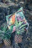 Frutta esotica tropicale fresca dell'ananas sulla spiaggia Isola di Parardise di Bali Borsa della spiaggia Fotografia Stock