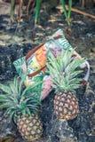 Frutta esotica tropicale fresca dell'ananas sulla spiaggia Isola di Parardise di Bali Borsa della spiaggia Immagini Stock