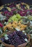 Frutta falsa dell'uva Fotografia Stock Libera da Diritti