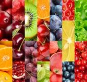 Frutta Fondo dell'alimento maturo fresco di colore Fotografie Stock