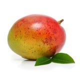 Frutta fresca del mango con i fogli verdi isolati Fotografia Stock