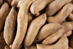 Frutta fresca dell'azienda agricola e nostrana e verdure sane organiche al franco Immagini Stock Libere da Diritti
