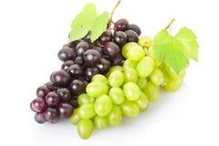 Frutta fresca dell'uva Immagini Stock Libere da Diritti