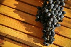 Frutta fresca dell'uva o della bacca in frutteto, frutta pulita o fondo popolare della frutta, frutta dal frutteto di agricoltura Fotografia Stock Libera da Diritti