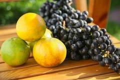 Frutta fresca dell'uva o della bacca in frutteto, frutta pulita o fondo popolare della frutta, frutta del mercato dal frutteto di Fotografie Stock