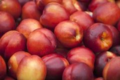 Frutta fresca della nettarina Fotografia Stock Libera da Diritti