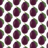 Frutta fresca della prugna Fotografia Stock Libera da Diritti