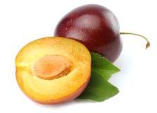 frutta fresca della prugna con le fette tagliate della prugna isolate su fondo bianco fotografia stock