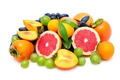 frutta fresca della raccolta Immagini Stock Libere da Diritti