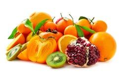 frutta fresca della raccolta Fotografia Stock