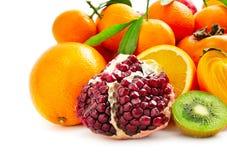 frutta fresca della raccolta Immagine Stock Libera da Diritti