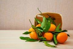 Frutta fresca delle arance del mandarino con permesso Fotografie Stock Libere da Diritti