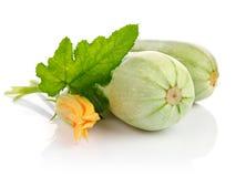 Frutta fresca dello zucchino con i fogli verdi Immagine Stock