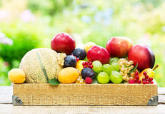Frutta fresca mista Fotografie Stock Libere da Diritti