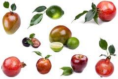 Frutta fresca su bianco immagine stock