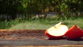 Frutta fresca succosa di estate stock footage