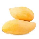 Frutta gialla del mango isolata su fondo bianco immagine stock