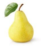 Frutta gialla della pera con la foglia isolata su bianco Immagini Stock