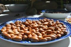Frutta a guscio dell'argania spinosa Fotografia Stock