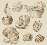 Frutta - illustrazione Fotografia Stock Libera da Diritti