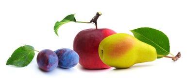 Frutta isolata su una priorità bassa bianca Fotografia Stock Libera da Diritti