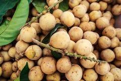 Frutta Langsat & Wollongong. Fotografia Stock
