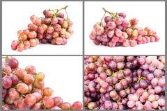 Frutta matura dell'uva Immagine Stock Libera da Diritti
