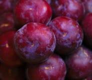 Frutta matura e albero-fresca pronta per trasporto o consumo immagini stock