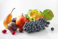Frutta matura e succosa come autunno del regalo Fotografie Stock
